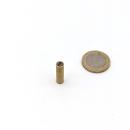 Stabgreifer mit Kern aus SmCo ø 6 x 20 mm, Passung...