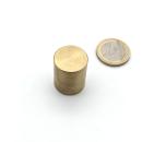 Stabgreifer NdFeB ø20x25, Haftkraft 280 N ~ 28,5 kg
